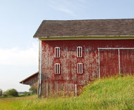 Weathered red Hoosier barn. Old red barn with peeling paint surrounded by tall grass sunny Hoosier morning stock images
