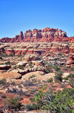 Weathered rocks. In needles area of Canyonlands National Park USA Royalty Free Stock Photos