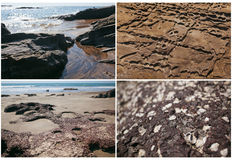 Weathered rocks on beach Royalty Free Stock Images