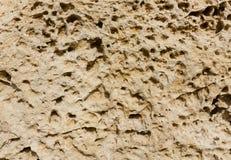 Weathered sandstone surface. Seacoast. Crimea, Sevastopol. Royalty Free Stock Photos