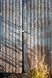 Weathered shed's door. With sunlight Stock Photos