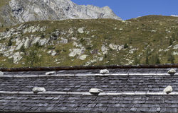 Weathered shingle roof. In the italian alps, Europe Stock Image