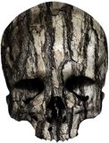 Skull covered with old tree bark. Weathered Skull covered with old tree bark. Also available as isolated PNG-file Stock Image