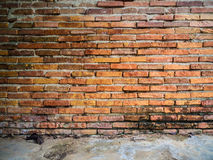 Weathered stained old brick wall background with floor Stock Photography