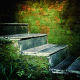 Weathered stairs of abandoned tropical house Stock Photos