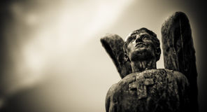 Weathered stone angel Royalty Free Stock Photography