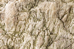 Weathered stone background texture Stock Images