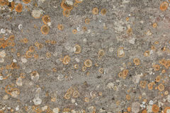 Weathered stone wall with lichen royalty free stock photography