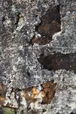 Weathered stone wall Royalty Free Stock Photos