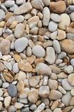 Weathered stones on a beach Stock Images
