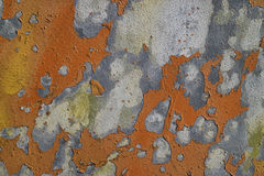 Weathered surface Royalty Free Stock Images