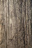 Weathered Telephone Pole. Closeup of the weathered surface on a wooden telephone pole. Vertical shot Stock Images