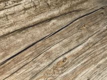 Weathered timber. Sun-dried and weathered timber texture with grain standing Royalty Free Stock Photography