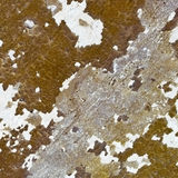 Weathered wall - background Stock Images