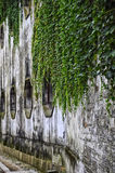 Weathered wall Stock Photography
