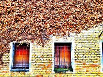 Weathered wall and old barricaded windows Stock Photos