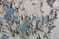 Weathered wall. To be used as background royalty free stock images