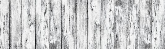 Weathered white painted old wood boards - wide rural background. Weathered white painted wooden boards. Wide rustic texture. Old knotty cracked wood surface royalty free stock photography