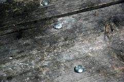 Weathered wood. Stock Image