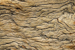 Weathered Wood. Weathered and contorted natural old pine wood royalty free stock image