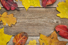 Weathered wood background with leaves Royalty Free Stock Photos