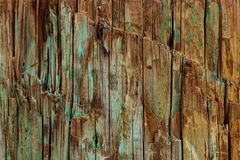 Free Weathered Wood Background, Natural Vintage Grunge Texture With Paint Of Faded Shades Of Blue Green, Aqua And Turquoise Over Natura Stock Photography - 126823622
