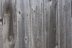 Weathered wood background Stock Image