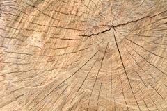 Weathered wood background. There was a beautiful background stock photography