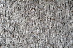 Weathered wood background. There was a beautiful background royalty free stock image