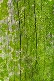 Weathered Wood Background Stock Photography