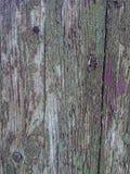 Weathered wood background Stock Photos