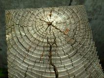 Weathered Wood Grain Stock Photography