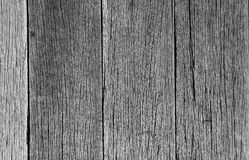 Weathered wood plank. Close-up image of old weathered wood plank in black and white Royalty Free Stock Photo