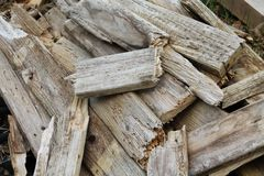 Weathered wood scraps Pacific Northwest Royalty Free Stock Photo