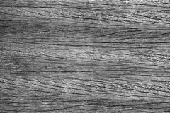 Weathered wood texture. Close-up image of old weathered wood plank in black and white Royalty Free Stock Photos