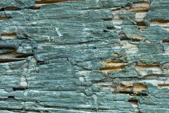 Weathered wood texture. Closeup background Royalty Free Stock Images