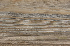 Weathered wood texture. Grey weathered wood texture close-up as background Royalty Free Stock Image