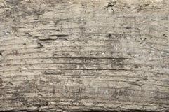 Weathered wood texture Stock Image
