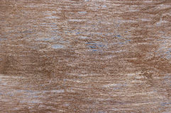 Weathered wood texture Royalty Free Stock Photo