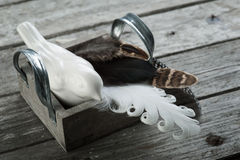 Weathered wooden background with feathers Stock Photography