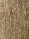Weathered wooden background texture Stock Images