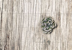 Weathered Wooden Board Royalty Free Stock Image