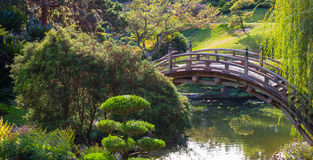 Weathered wooden curved bridge over a pond. Weathered wooden curved bridge in a lush Japanese garden Stock Photo