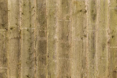 Weathered Wooden Fence Panels Background Royalty Free Stock Image
