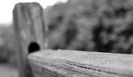 Weathered wooden fence at Sammamish trail Stock Image
