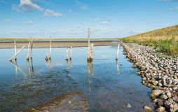 Weathered wooden pilings in the water next to a dike Royalty Free Stock Image