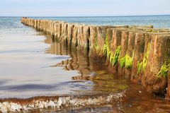 Weathered wooden poles with seagrass leading into the Baltic Sea. Many weathered wooden poles with seagrass leading into the Baltic Sea Royalty Free Stock Image