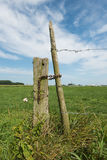 Weathered Wooden Post With Barbed Wire Against A Blue Sky Stock Photography
