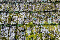 Weathered Wooden Shingles – Horizontal Background Royalty Free Stock Images