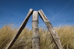 Weathered wooden stakes from a fence stand in a triangle in fron Royalty Free Stock Photography